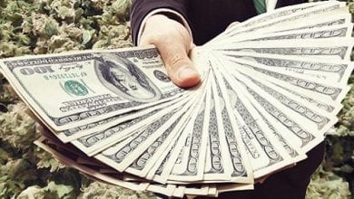 Photo of שנת 2015 בקולורדו: מכירות קנאביס במיליארד דולר