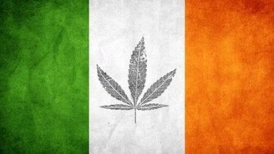 Photo of אירלנד מתכננת אי הפללה של כל סוגי הסמים