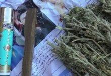 Chinese hash grass