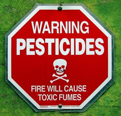 בגלל חוסר ברגולציה - מגדלים משתמשים בחומרים מסוכנים