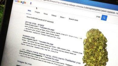 מגזין קנאביס תוצאות חיפוש גוגל