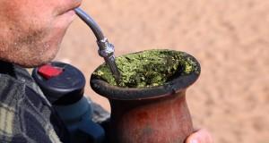 תה קוקאין נמכר בטעות באיטליה במשך שנים
