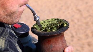 Il tè della cocaina è stato venduto accidentalmente in Italia da anni