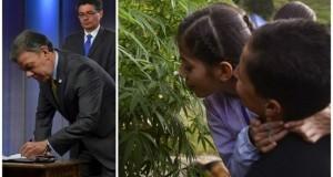 קולומביה אישרה מריחואנה רפואית