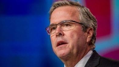 """Photo of ג'ב בוש: """"תומך בדה קרימינליזציה של קנאביס"""""""