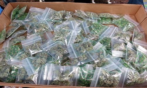 עשרות שקיות עם גרם אחד לש מריחואנה
