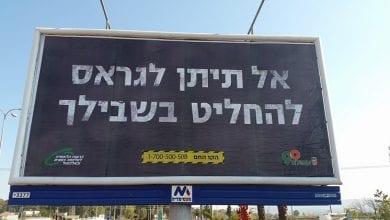 Photo of כמה עלה קמפיין הגראס של עיריית עפולה?