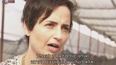 Photo of מאבקם של חקלאי הערבה לגידול קנאביס בישראל