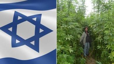 Photo of האם משרד החקלאות יקים חוות גידול המפ בישראל?