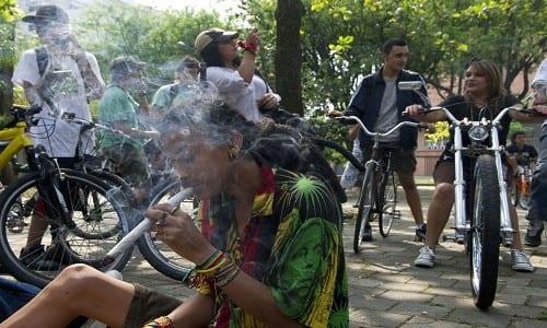 רוכבי אופניים מעשנים מריחואנה