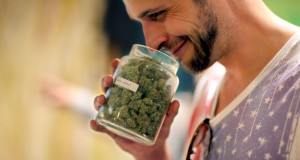 A young man smells a jar full of cannabis flowers and smiles