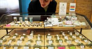 עובד דלפק בחנות לממכר מריחואנה רוכן מעל חלון תצוגה עמוס בזנים שונים