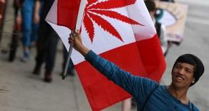 צעיר מחזיק דגל קנדה קנאביס