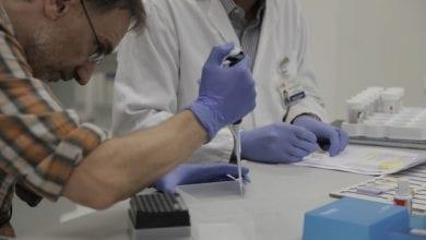 Photo of גיוס כספים למחקר קליני על קנאביס כתרופה לסרטן