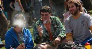 סטודנטים מעשנים קנאביס