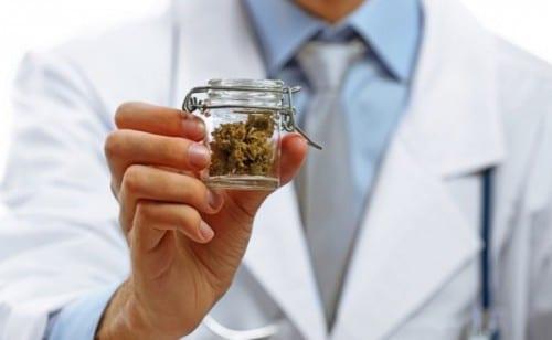 רופא מחזיק צנצנת קנאביס רפואי