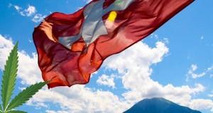 דגל שווייץ עם עלה מריחואנה