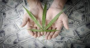 עלה מריחואנה על רקע שטרות כסף