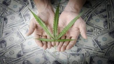 Photo of האמריקנים קנו בשנת 2015 קנאביס חוקי ב-5.4 מיליארד דולר