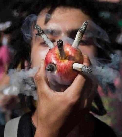 אדם מעשן כמה ג'וינטים במקביל מתוך תפוח