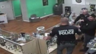 שוטרים גונבים עוגיות מחנות קנאביס בקולורדו, במהלך פשיטה אלימה (הוגשה תביעה)