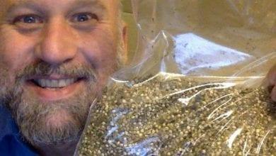 Photo of מחאה קנדית: אקטיביסט שולח מיליון זרעי קנאביס בחינם