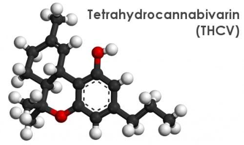 המבנה המולקולרי של הקנבינואיד טטרה-הידרו-קנאביווארין (THCV)