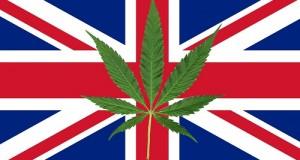 דגל בריטניה (אנגליה) ועליו עלה קנאביס - קמפיין לגליזציה בבריטניה, מפלגת ליברל-דמוקרטים