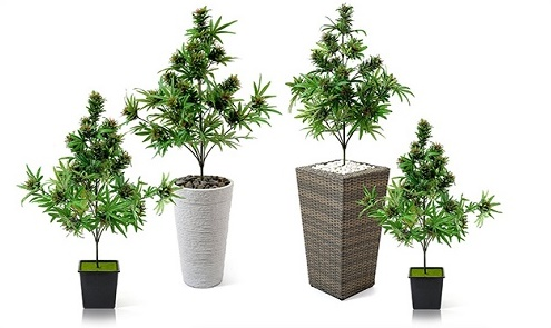צמחי קנאביס מלאכותיים לקישוט - almost cannabis