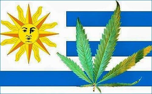 """אורוגוואי - גרם בדולר, אבל כמעט ולא ניתן להיכנס עם קנאביס (למטופלים: איך יוצאים לחופשה בחו""""ל עם קנאביס רפואי)"""