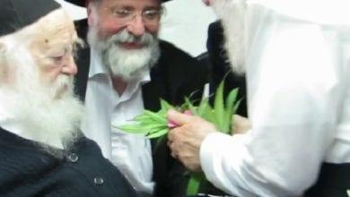 Photo of הרב הריח ופסק: קנאביס רפואי כשר לפסח