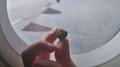 "Photo of טיסה עם קנאביס רפואי  – לחו""ל או לאילת"