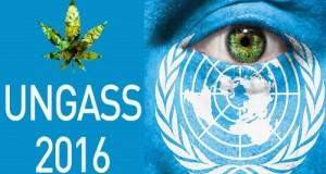 """כנס UNGASS 2016 - אסיפת האו""""ם הכללית (19 עד 21 לאפריל 2016)"""