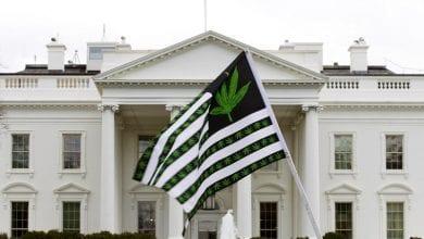 """דגל ארה""""ב מריחואנה מול הבית הלבן"""