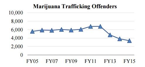 הנתונים הפדרליים מראים: ירידה של 52% בסחר במריחואנה בתוך 3 שנים