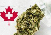 לראשונה חברת ביטוח קנדית מכסה עלויות קנאביס רפואי