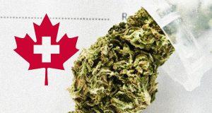 פרח קנאביס בשקית, סמל קנדה