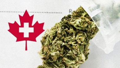 Photo of לראשונה חברת ביטוח קנדית מכסה עלויות קנאביס רפואי