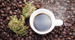כוס קפה, פולי קפה, פרחי קנאביס