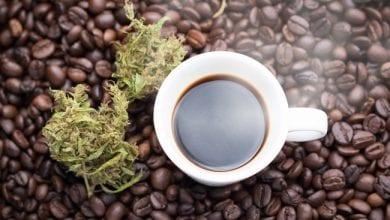 Photo of איך משפיע על הגוף ערבוב קנאביס עם קפה
