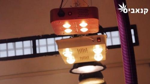 נורות לד LED בחנות אינטגרל הידרופוניקס באר שבע