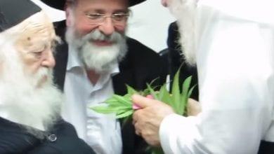 Photo of תלונה הוגשה נגד הרב קנייבסקי בגין החזקת קנאביס