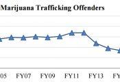 """ארה""""ב: צניחה בסחר לא חוקי במריחואנה"""