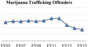 """הברחות מריחואנה לא חוקיות ארה""""ב"""
