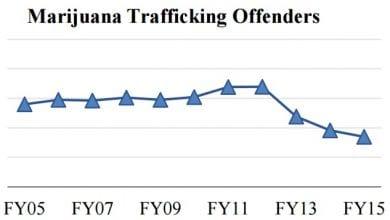 """Photo of ארה""""ב: צניחה בסחר לא חוקי במריחואנה"""