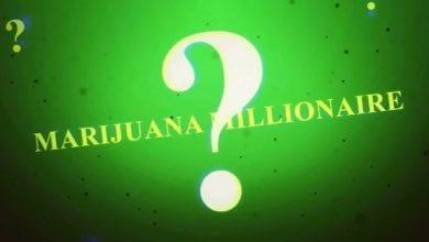 Photo of ריאליטי חדש: מי רוצה להיות מיליונר מריחואנה?