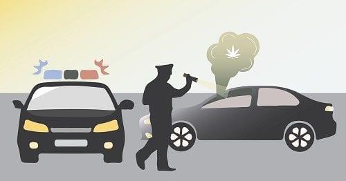 """שוטר ונהג, קנאביס - ממצאי המחקר מראים: קביעת סף THC לעבירת """"נהיגה תחת ההשפעה"""" היא החלטה ללא בסיס מדעי"""