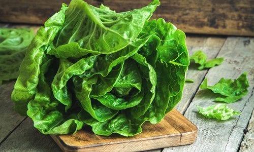 ירקות ירוקים מכילים כמות גדולה של נוגדי חמצון, ועוזרים לשמור על חילוף חומרים בריא