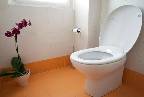 """חדר שירותים (מתוך מדריך """"כך עברתי בהצלחה בדיקת שתן במשטרה"""")"""
