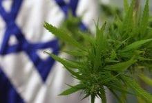 ישראל קנאביס